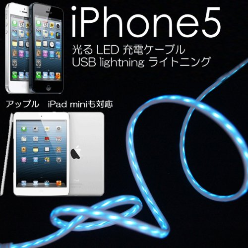 apple充電ケーブル